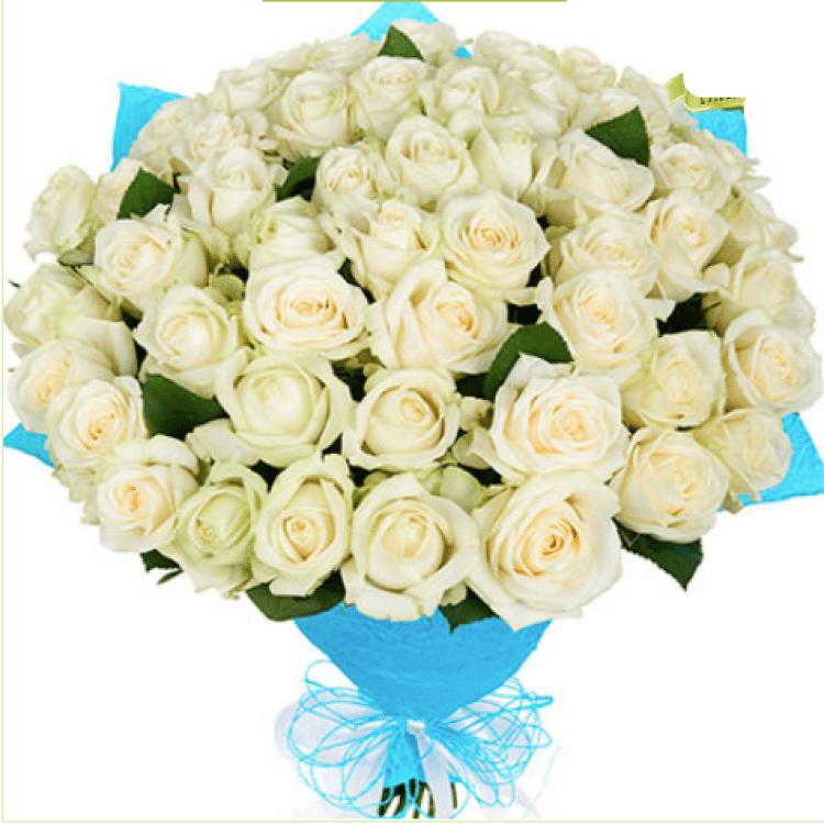 51 біла троянда - image-0