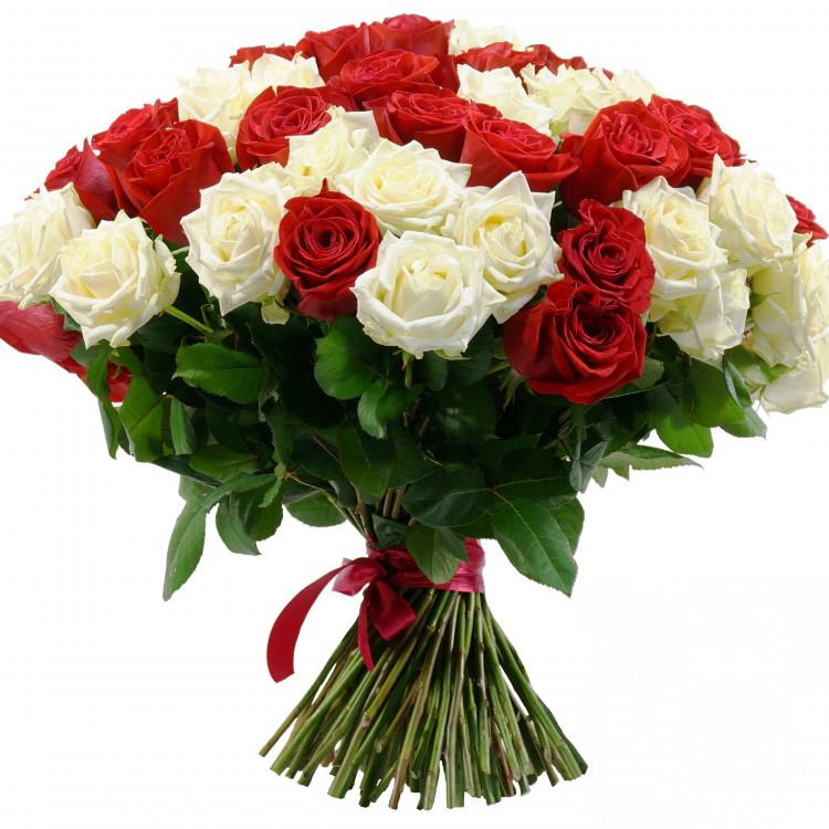 Букет червоних та білих троянд - image-0