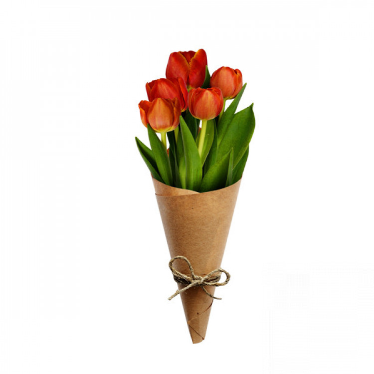 Букет 5 червоних тюльпанів - image-0
