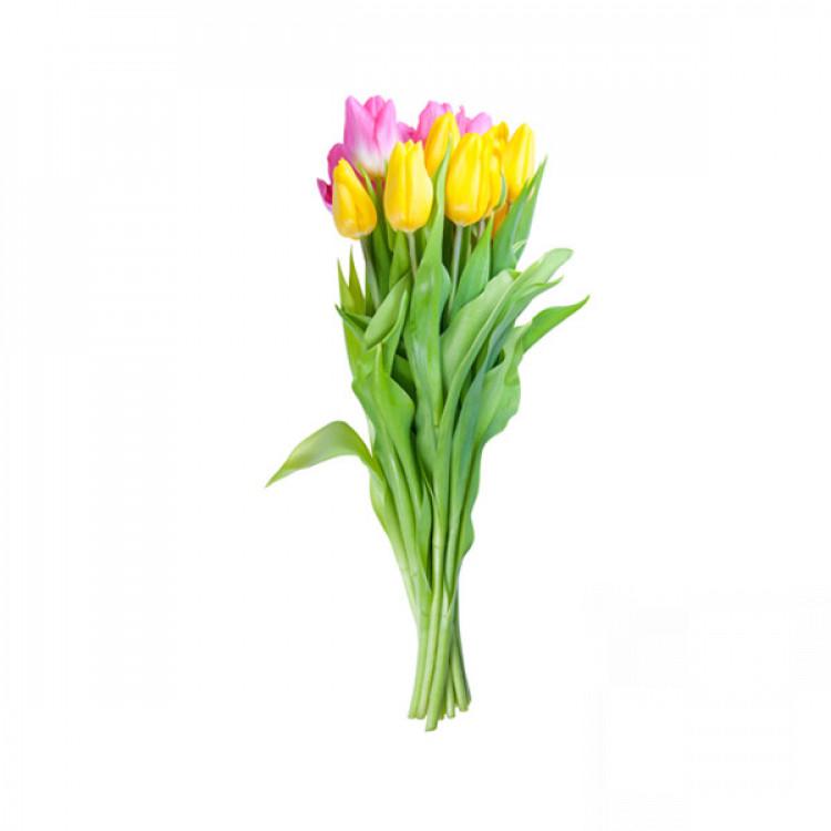 Букет жовтих і фіолетових тюльпанів - image-0